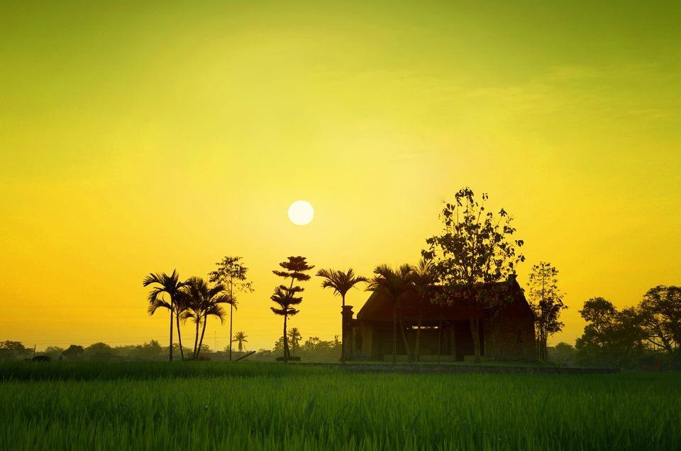 Điểm du lịch nổi tiếng Cù Lao Dung - Sóc Trăng
