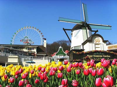 SEOUL - NAMI - EVERLAND – TRUỢT TUYẾT, 5N4D| Bay Vietnam airlines